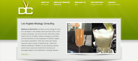 los-angeles-web-design-and-seo